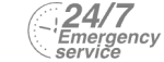 24/7 Emergency Service Pest Control in Kingston upon Thames, KT1. Call Now! 020 8166 9746