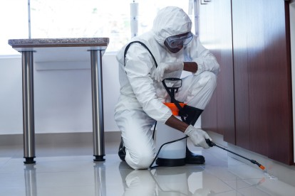 Emergency Pest Control, Pest Control in Kingston upon Thames, KT1. Call Now 020 8166 9746
